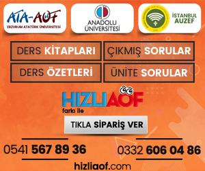 Ataturk Universitesi Acikogretim Fakultesi Cikmis Sorular